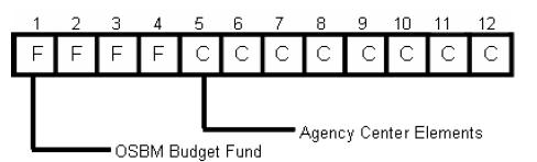 Using Dimensions Center Center codes are composed of (a) a four-digit budget fund code that is established by the Office of State Budget and Management (OSBM) and (b) agency-defined Center element