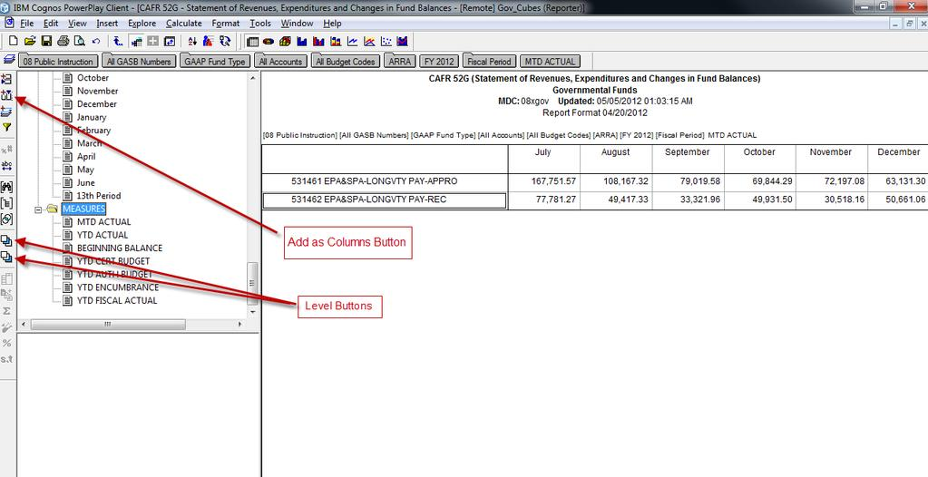 Creating Custom Reports The DSS adds the detail level of the Fiscal Period dimension as columns.