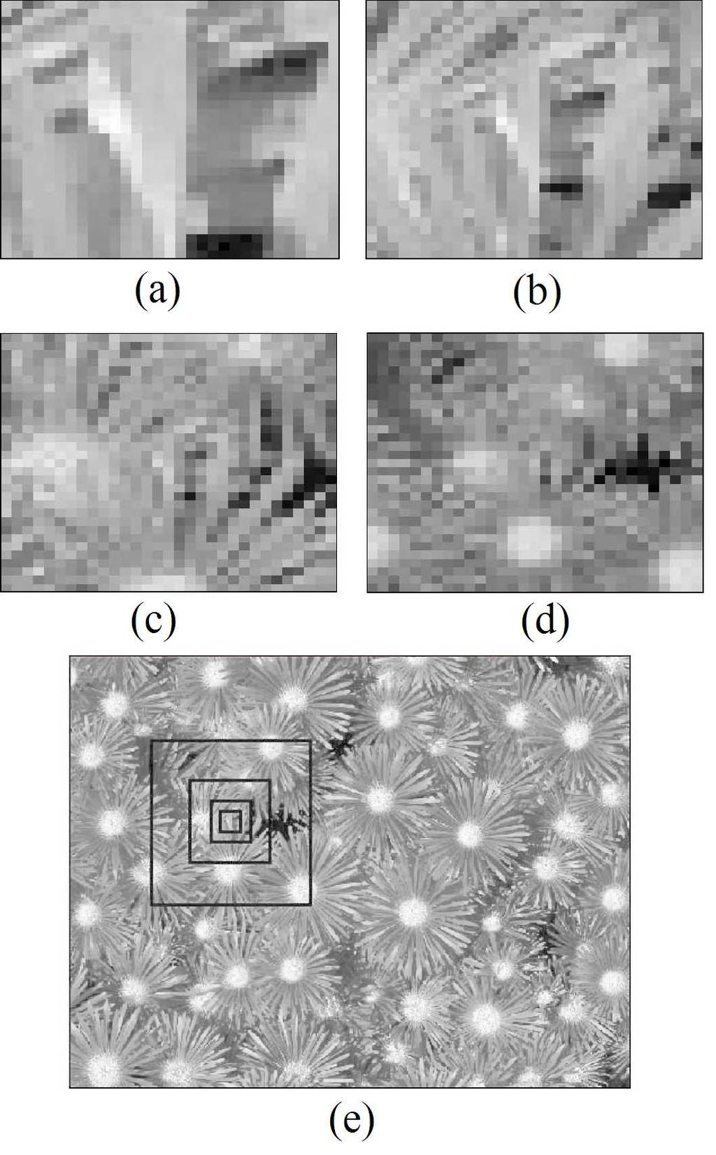 Figure 3.5: (a), (b), (c), (d), 31 31 patches taken from the image shown in Figure 3.3 from finer scales to coarser scales, respectively, (e) the projection of patches onto the original image.