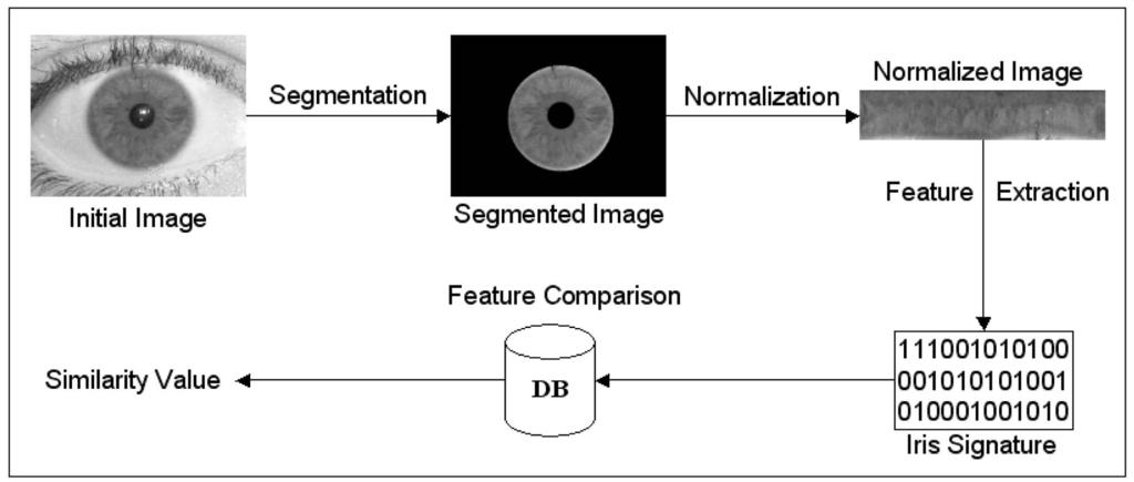 608 IEEE TRANSACTIONS ON PATTERN ANALYSIS AND MACHINE INTELLIGENCE, VOL. 29, NO. 4, APRIL 2007 Fig. 1. Typical stages of iris recognition.