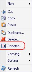 6.1.5.5 Renaming Items There are two ways to rename items. 6.1.5.5.1 Via the Rename Command Select the item to be renamed and click on the Rename button on the Home» Rename Chunk (see below).