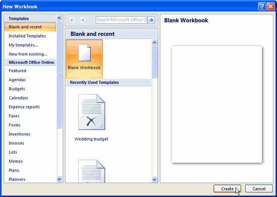 The New Workbook dialog box opens and Blank Workbook is