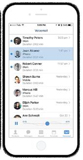 The subscriber portal also allows end users to schedule conferences in advance and provide notifications with attachments to the other participants using either email or SMS.
