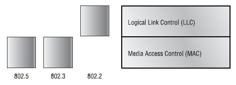 The Data Link Layer 34 The Data Link layer provides the physical transmission of the data and handles error notification, network topology, and flow control.