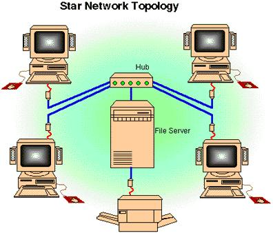 corrupt data occur when different use the network at the same time Click totopology see examples Ring Star topology Bus Typical corporate networks are client-server Client-server requires various