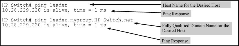 "DNS name ""leader"" (assigned by a DNS server to an IP address used in that domain), the operator can use either of the following commands: Figure 73: Example: of using either a host name or a fully"