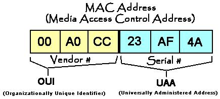 MAC to IP Address Comparison MAC address o Identifies a specific NIC in a computer on a network